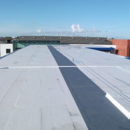 QBB directed a new roof project at Chanel College
